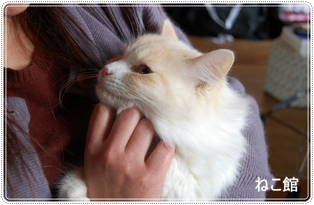 blog_20121127132338.jpg