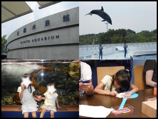 京都水族館3