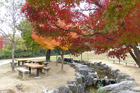 紅葉の公園で♪