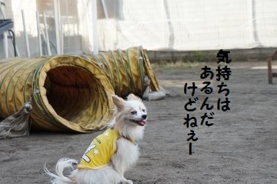 067_20120824141743.jpg