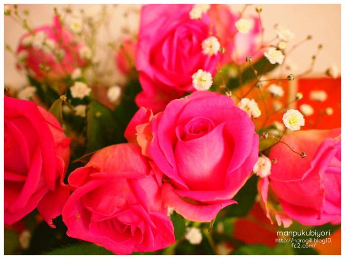 001_20121227153006.jpg