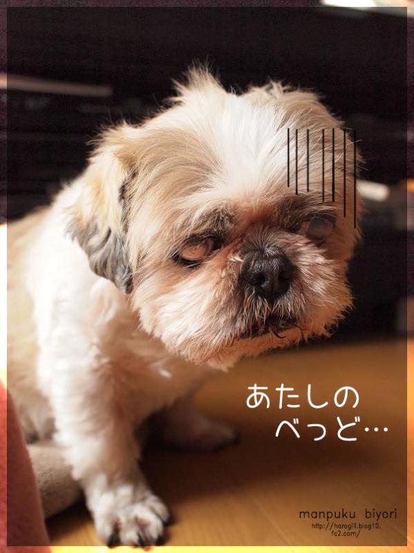 002_20120604174142.jpg
