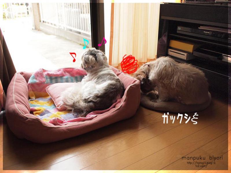003_20120604174141.jpg