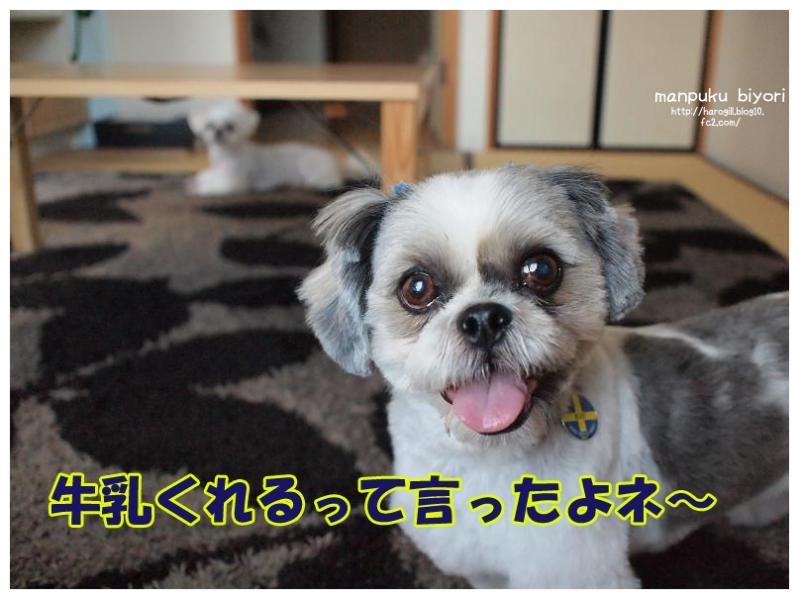 004_20120705130847.jpg