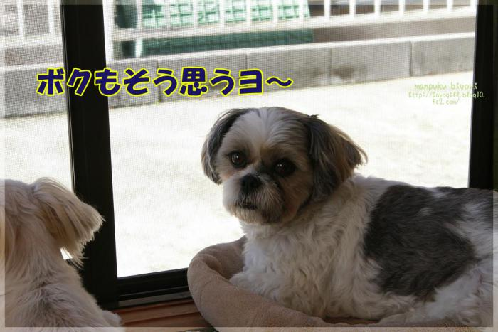005_20121004164524.jpg