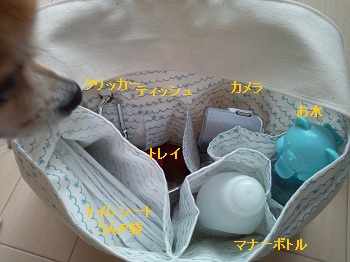 DSC_0347_20120816022123.jpg