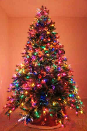 20121125 Xmas Tree