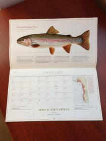20121211_Trout Calender 5