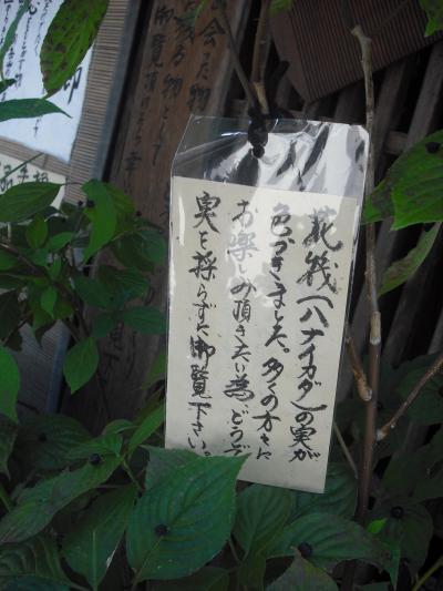 奈良井宿.10