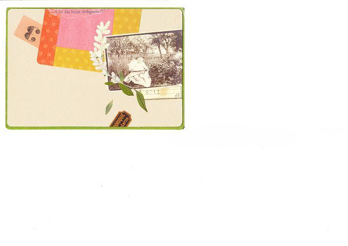 押し花素材集カード_0003