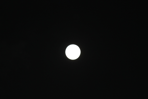 IMG_moon2993.jpg