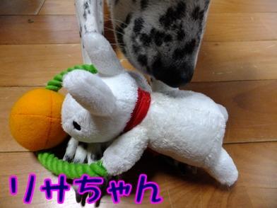 2012_1110_163303.jpg