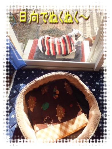 blog_0102_153630.jpg