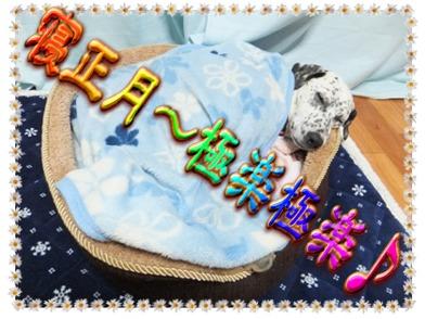 blog_0102_232757.jpg