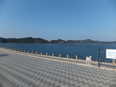 blog_0112_141825.jpg