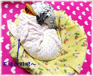 blog_0127_222211.jpg
