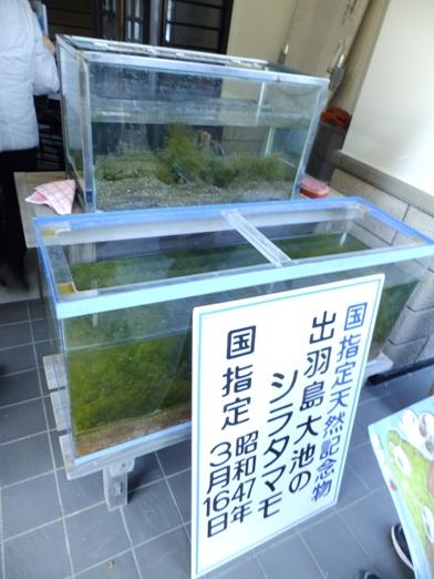 blog_0210_145017.jpg