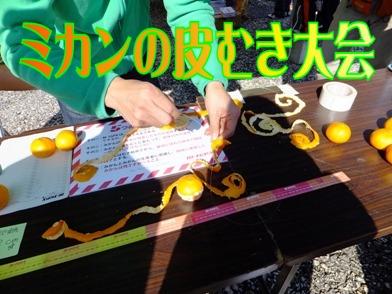 blog_1118_110600.jpg
