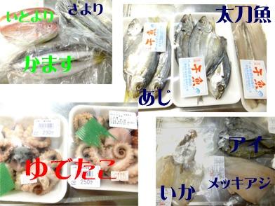 blog_1118_165219.jpg