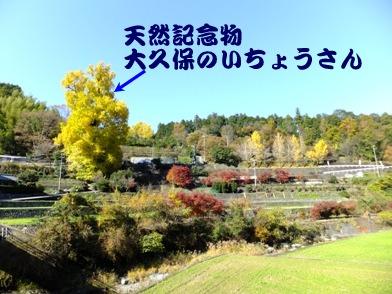 blog_1125_133226.jpg