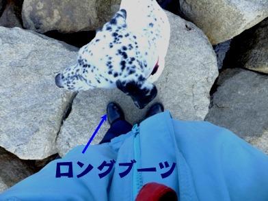 blog_1201_113418.jpg