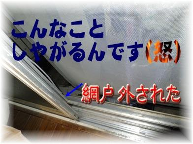 blog_1201_170339.jpg