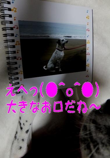 blog_1222_171811.jpg