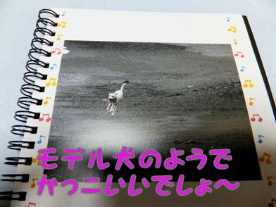 blog_1222_171906.jpg