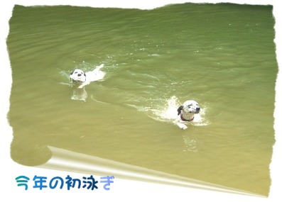 0630水泳