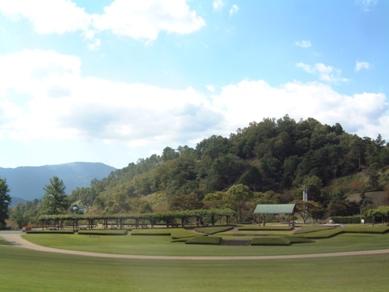 森林公園全景