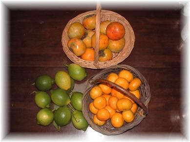 remon&orange