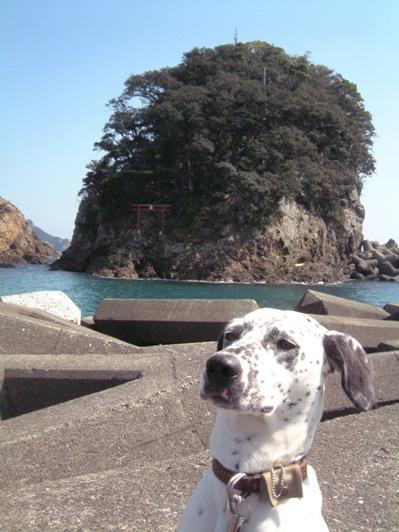 大浜海岸の神社