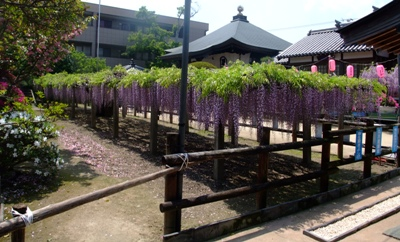 地福寺の全景