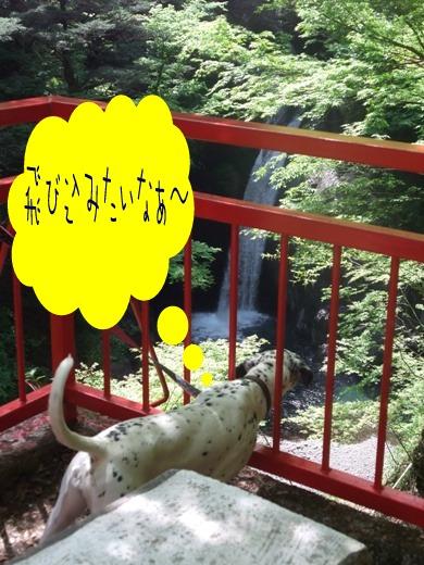 滝を覗く杏奈