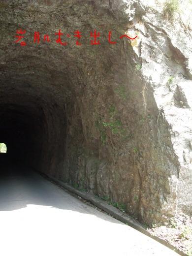 むき出しのトンネル
