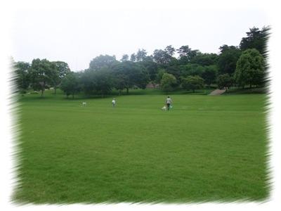 森林公園080615