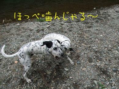 杏奈とふじ吉080628-3