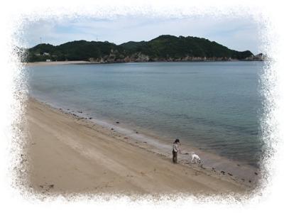 tainohama1