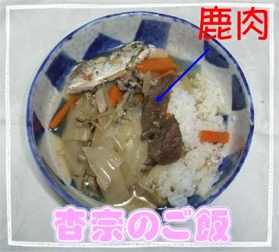 杏奈のシカ肉ご飯