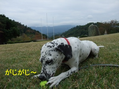 blog_10240005