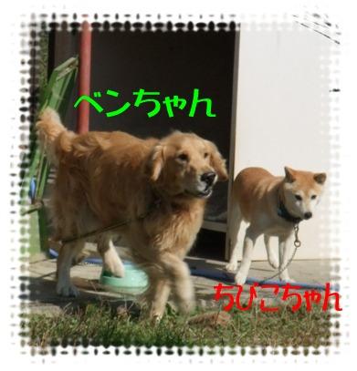 blog_11080003