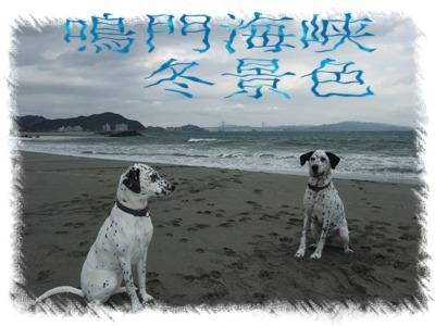 blog11280043