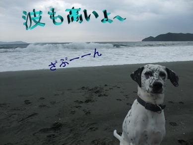 blog_11280066