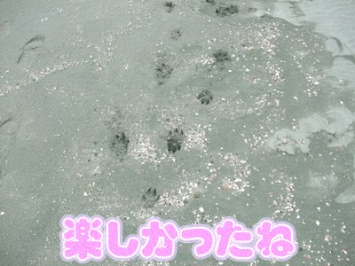 blog_11280039