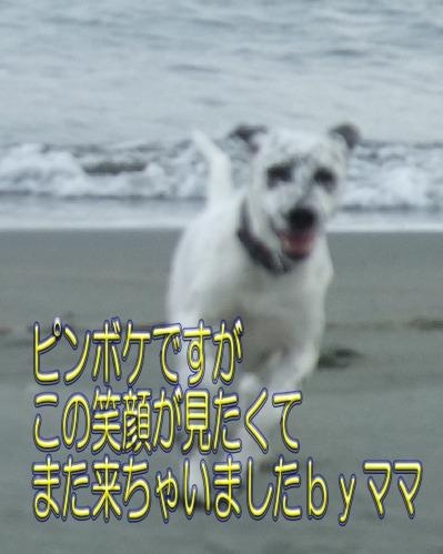 blog_12060012