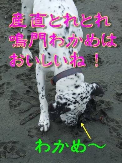 blog_12060023