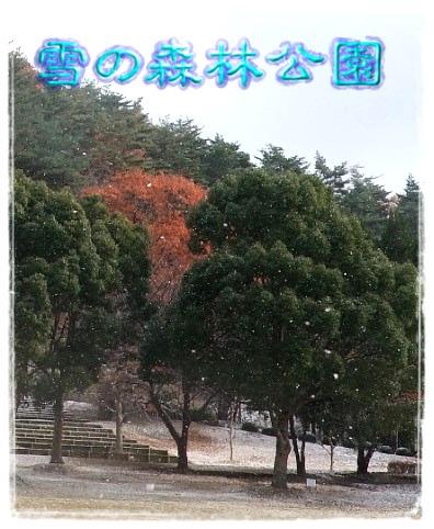 雪の森林公園