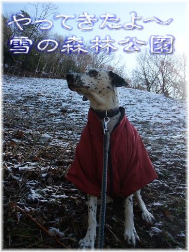 blog_12200014