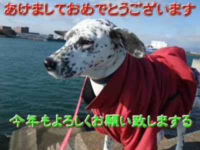 blog_01010005