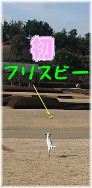 blog_01100057
